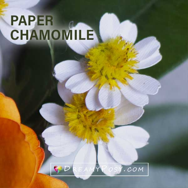 Paper chamomile template